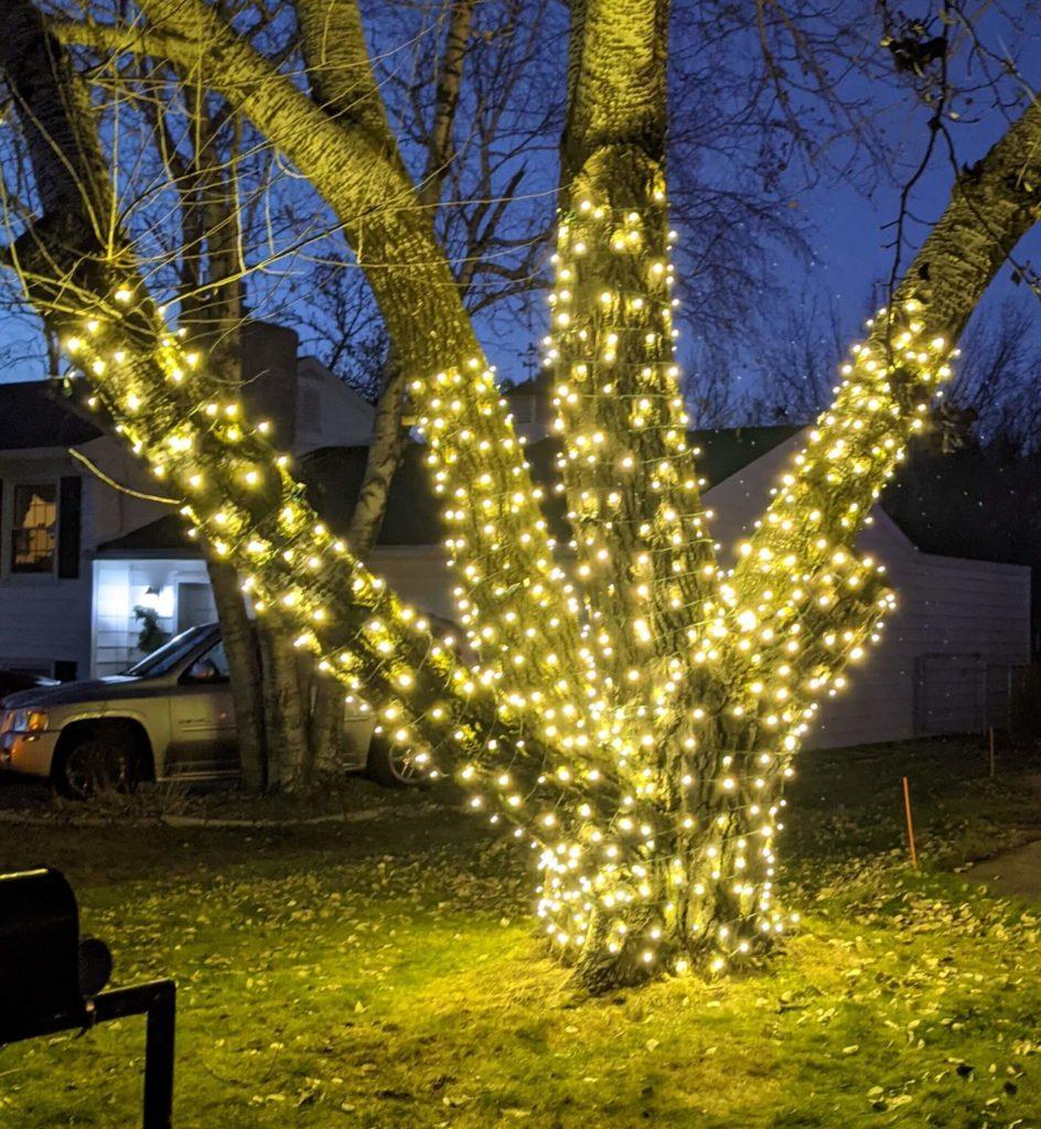5mm Holiday Lighting